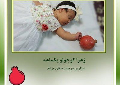 ماندانا-اکبری-1